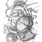 zodiaco_cancer